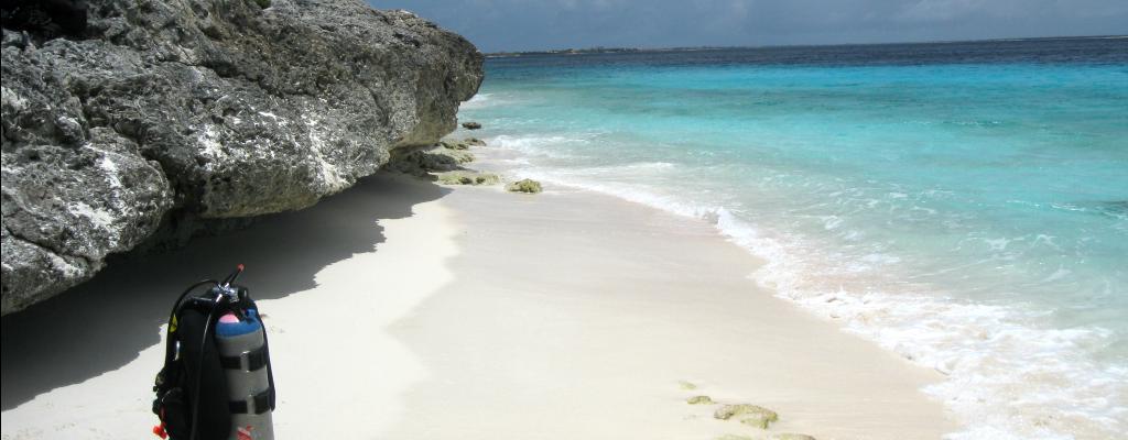 Scuba Diver Paradise